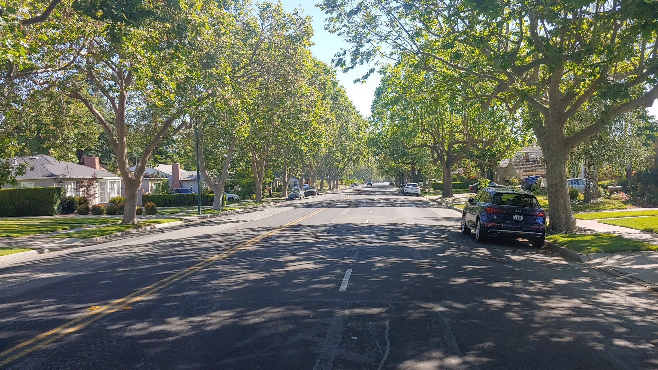 Naglee Avenue header photo